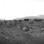 Invernahyle Farm 1912